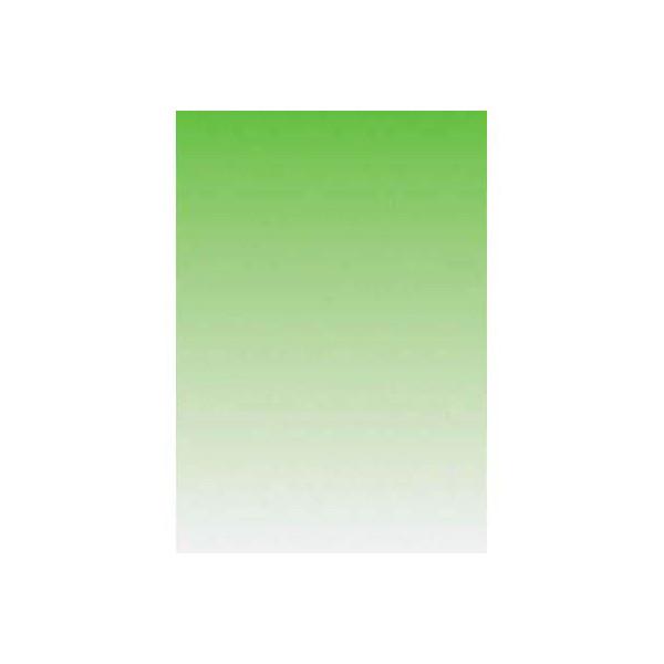Sigel Motivpapier DP355 A4 90g Farbverlauf lindgrün 100 Blatt