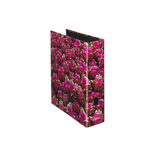 Herlitz Motivordner maX.file Fruits A4 breit 80mm Drachenfruchtmotiv