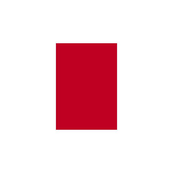 Heyda Tonzeichenpapier 50 x 70cm Rot 204711224 130g 25 Bögen