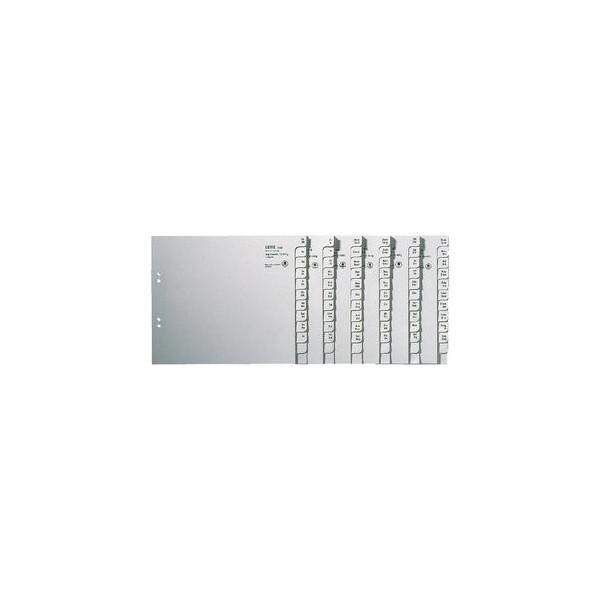 Leitz Kartonregister 1350 A-Z A4 halbe Höhe 100g graue Taben für 50 Ordner 20-teilig