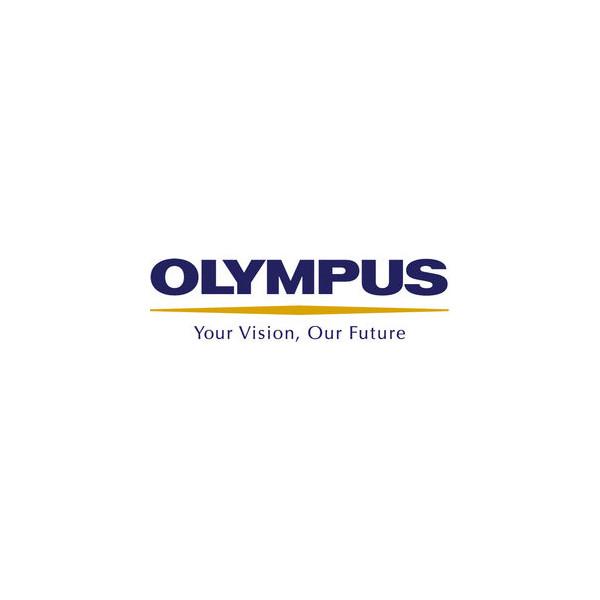 Olympus Ohrpolster für Kopfhörer E61 1 Pack(10 Polster)