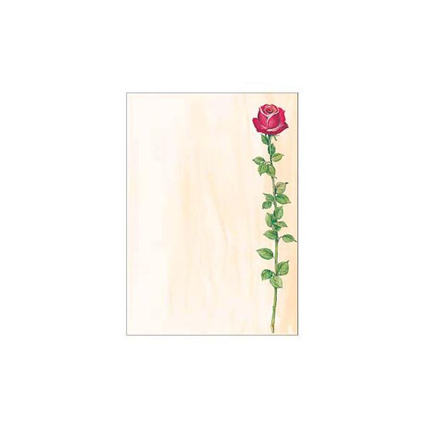 Sigel Motivpapier DP695 A4 90g Rose 25 Blatt