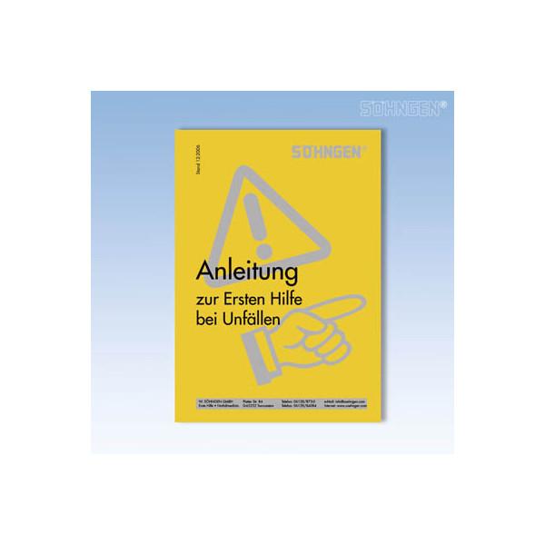 Söhngen Erste-Hilfe-Anleitung Heft BGI 503 12-2006