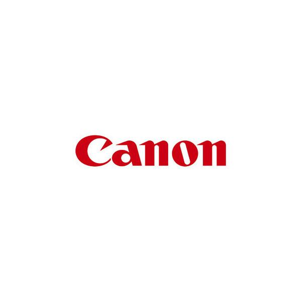 Canon Druckerpatrone PFI-302BK schwarz, 330 ml - Original