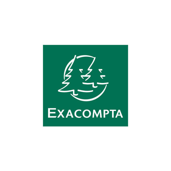 Exacompta MODULOTOP Normal Fach Set lichtgr. 363x305x105 Rec. PS