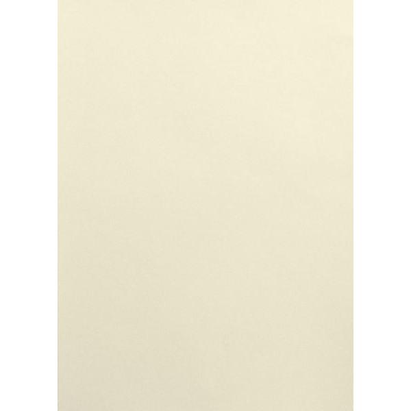 ELCO 704348 A4 DIN 90 g Design Papier 100BL elfenbein