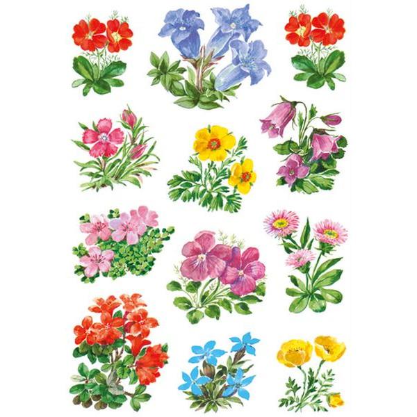 HERMA 3582 Schmucketikett Blumen