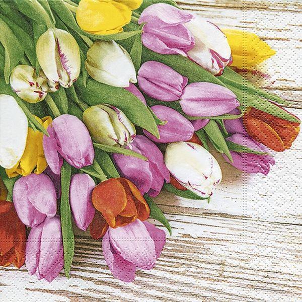 PAPER+DESIGN 200214 Tulpen Motivserviette Frühjahr 33x33cm